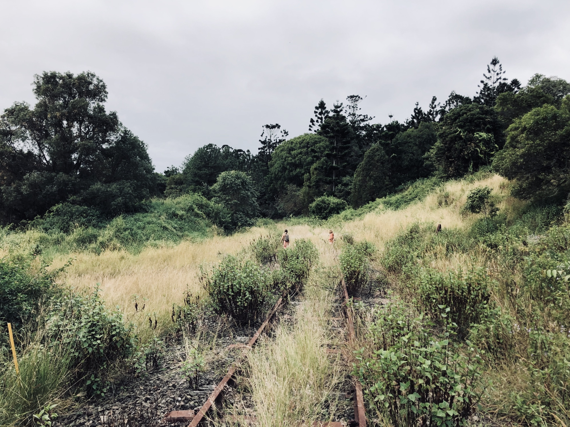 A Railway Expedition